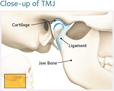 close-up of TMJ