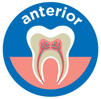anterior root canal costs aspen dental